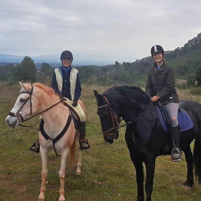 home-horses